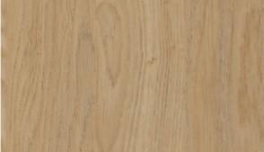 Oak, Lissa (MFC)